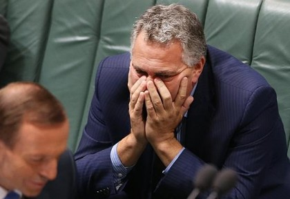 joe hockey face