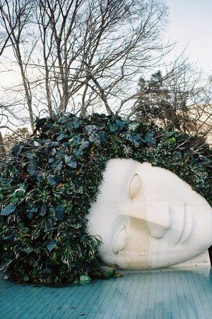 VivienTran.HakoneOpen-airMuseum2.FilmPhotograph.Edition1