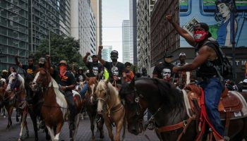 Horse BLM protests photo